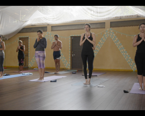 Moments from the March 2015 Ashtanga Retreat with Philippa Asher in Goa