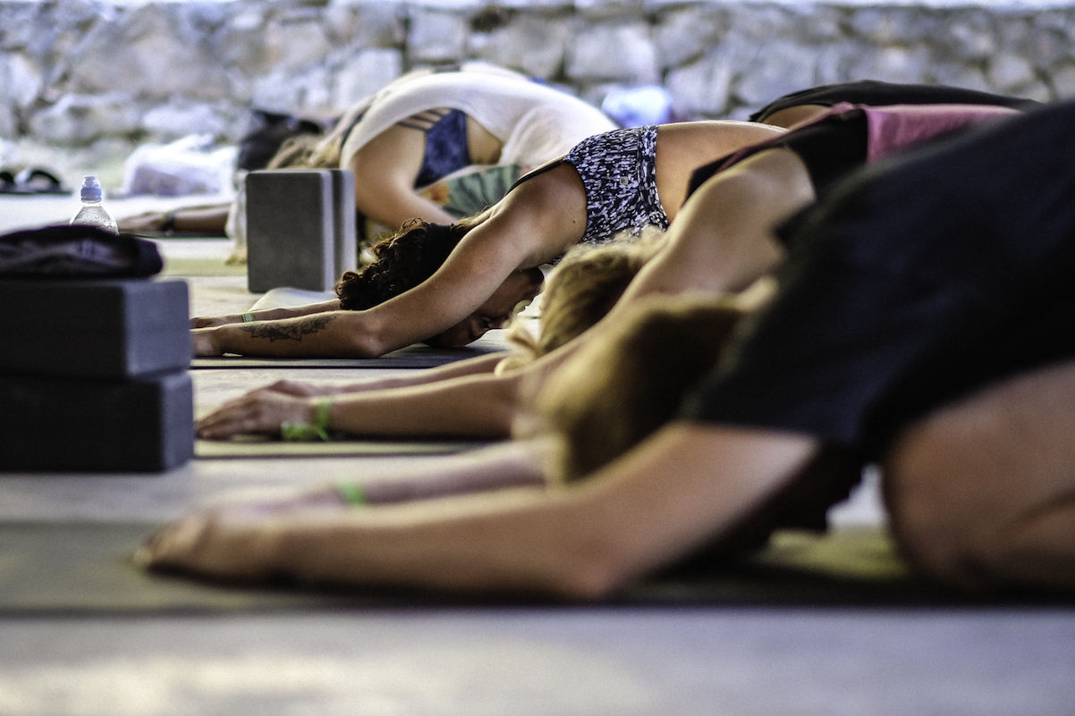 Gentle Giants: the Power of Yin and Restorative Yoga